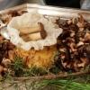 Pilzpfanne von hausgezüchteten Shiitake und Kräuterseitlingen mit Kartoffelbrägel und Gemüsejus