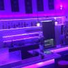 Neu bei GastroGuide: Altbau-Bar