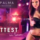 Foto zu Club Palma: