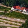 Neu bei GastroGuide: Bella Vista - Winzerhof Golk