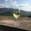 Neu bei GastroGuide: Weinstube Schloss Staufenberg