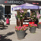 Foto zu EL IBERICO Tapas Restaurant Hamburg: