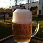 Foto zu Gaststätte ZUM REITERHOF: Bier