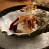 Amuse Bouche: Geräucherte Forelle mit Meerrettichschaum