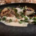 Foto zu Schuberts Brasserie: Blankett de la Mer mit Mangold, Erbsen und Reis