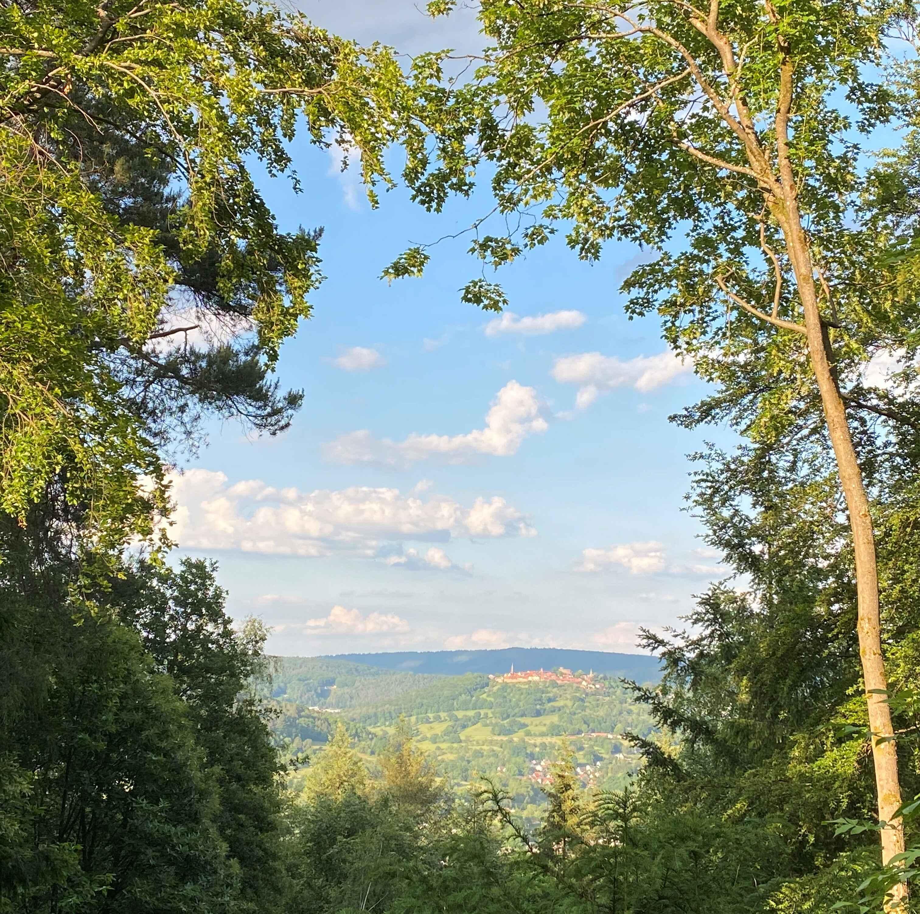 Bild zur Nachricht von Neckarriedkopf Hütte