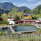 Foto zu Restaurant Prinze Gumpe - Wirtshaus & Naturbad: