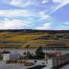 Foto zu Hotel Papa Rhein · Das Bootshaus: Blick zum Niederwalddenkmal und die Weinberge