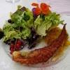 Gegrillter Oktopus / Germüsecouscous  / Blattsalate