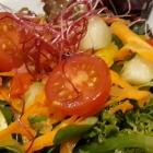 Foto zu Olivenhof Gronauer Wald: Beilagensalat