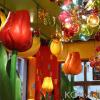 Bild von KOK van KOK