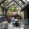 Neu bei GastroGuide: Elaine's Greenhouse