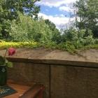 Foto zu Eau de Cologne: Neben der Terrasse