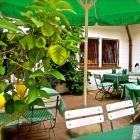 Foto zu Gasthaus Zur Post: Die Gartenplätze