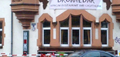 Bild von Dromedar