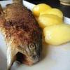 Ein Prachtfisch!