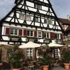 Foto zu Klosterkatz:
