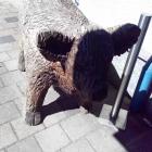 Foto zu Rosengarten · Beim Rinderwirt: Holz Gallowayrind