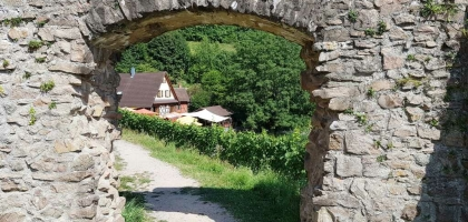 Bild von Burgwirtschaft Schauenburg