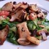 Romanasalat mit gebratenen Champignons und Kräutersaitlingen