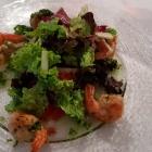 Foto zu Haus Gudesberg: Salat Gamba - bunte Salate mit 5 gegrillten Gamba und Rucola-Pesto als Vorspeise
