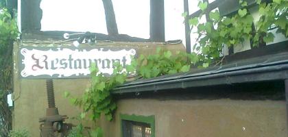 Bild von Weinschlauch